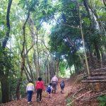 ボナペティ 久留米 こども達と山を散策