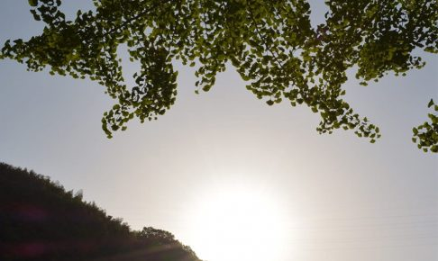 久留米の夕日